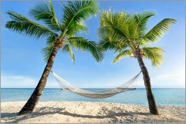 eyetronic - Hammock at the beach with palm trees in the south pacific