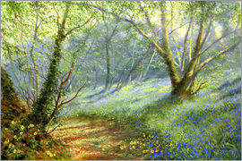 Rob Johnson - Hazel and bluebells