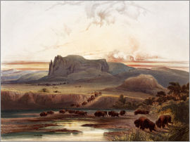 Karl Bodmer - herd of buffaloes on the upper missouri