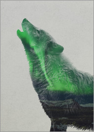 Andreas Lie - Howling in the Aurora Borealis