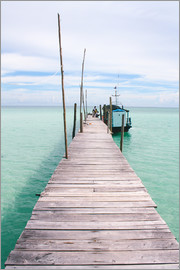 Alejandro Moreno de Carlos - Wooden jetty on tropical exotic island