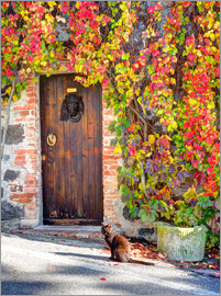 Julie Eggers - surrounded wooden door of autumn colored ivy