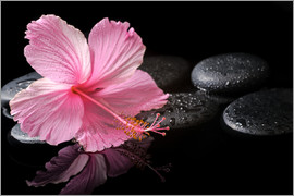 Hot Stone Massage with hibiscus