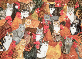 Ditz - Chicken-Cats