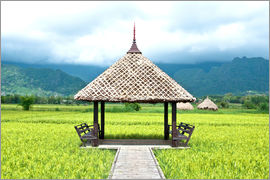 Hut in the green rice field