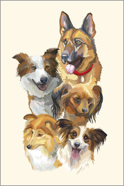 Dog breeds portrait