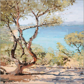 Johnny Morant - Ibiza from formentera