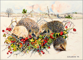 E.B. Watts - Hedgehogs in Hedgerow Basket