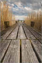 Denis Feiner - Longe jetty