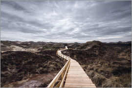 Oliver Henze - Island routes on Amrum