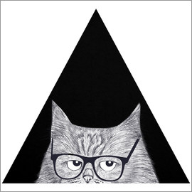 Valeriya Korenkova - Intelligent cat in triangle
