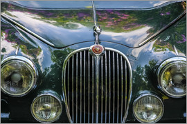 Christian Müringer - Classic car Jaguar Mark II