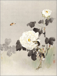 Watanabe Seitei - Young Bird And A Butterfly