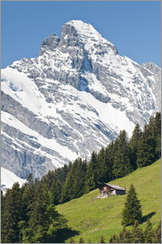 Michael DeFreitas - Jungfrau Region, Switzerland. Jungfrau massif and Swiss chalet near Murren.