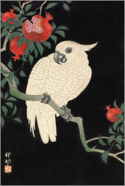 Ohara Koson - A cockatoo on a pomegranate tree