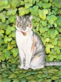Ditz - Cat in ivy