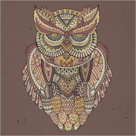 Owl - colours of the forest