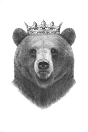 Valeriya Korenkova - King bear