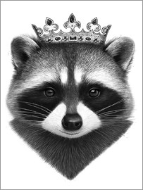 Valeriya Korenkova - King raccoon