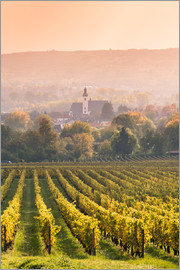 Matteo Colombo - Church and vineyards in the Rhine valley