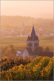 Matteo Colombo - Church and vineyards near Ville Dommange in Champagne, France