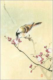 Ohara Koson - Small Bird and Blossoms