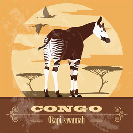 Kidz Collection - Congo - Okapi