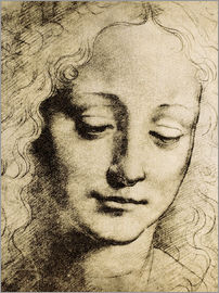 Leonardo da Vinci - Head of a young