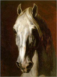 Theodore Gericault - Head of a white horse