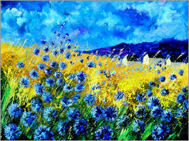 Pol Ledent - field of cornflowers