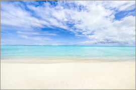 Jan Christopher Becke - Crystal clear water on a beach in the South Pacific, Fiji islands