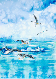 Zaira Dzhaubaeva - Black headed Seagulls At Seven Seas Beach