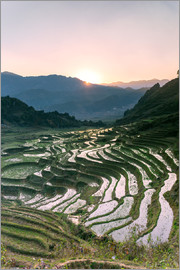 Matteo Colombo - Landscape: sunrise over rice paddies in Sa Pa, Vietnam