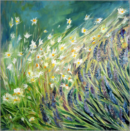 Sophia Elliot - Lavender and Daisies, 2010
