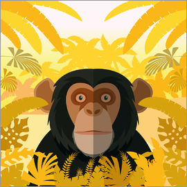 Kidz Collection - Habitat of the chimpanzee