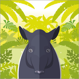 Kidz Collection - Habitat of the Tapir