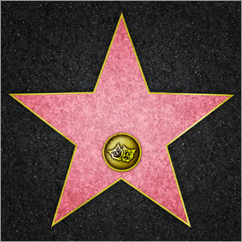 Blank Theater star, Hollywood Boulevard