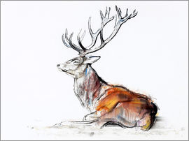 Mark Adlington - Lying Stag