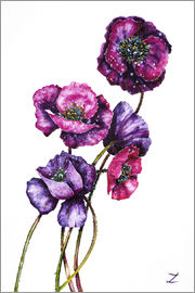 Zaira Dzhaubaeva - Purple Poppies