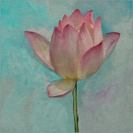 John Lang Art Gallery - Pink Lotus on Turquoise Blue