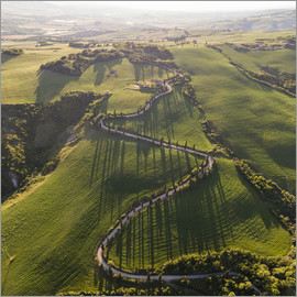 Matteo Colombo - Aerial view of winding road in Tuscany, Italy