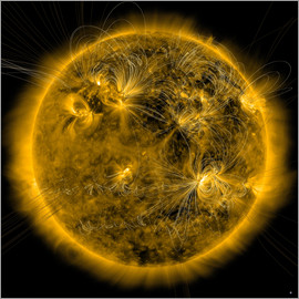 Stocktrek Images - Magnetic field lines on the Sun.