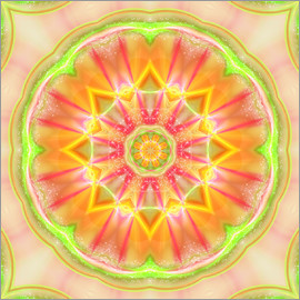 Dolphins DreamDesign - Mandala - Success