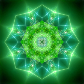Dolphins DreamDesign - Mandala - Healing Power