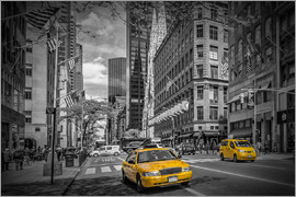 Melanie Viola - MANHATTAN 5th Avenue