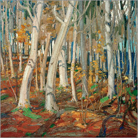 Tom Thomson - Maple Woods, Bare Trunks