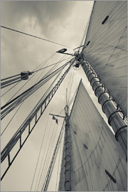 Walter Bibikow - Massachusetts, Gloucester, Schooner Festival, sails and masts
