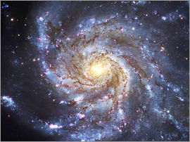 Robert Gendler - Messier 101, The Pinwheel Galaxy in Ursa Major.