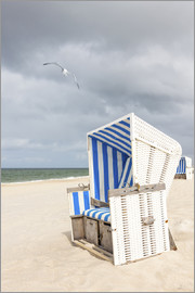 Seagull and beach chair on Sylt