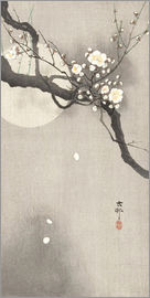 Ohara Koson - Plum Blossoms at Night